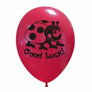 Palloncini scolastico - good luck